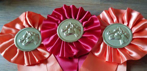 Christel Jansen van der Sligte met twee paarden in de prijzen!