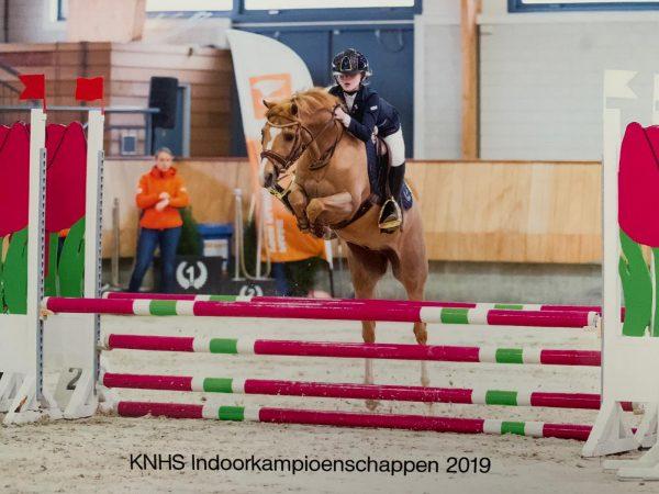 Mariesa Veenstra 4e prijs op NK Springen en overige uitslagen